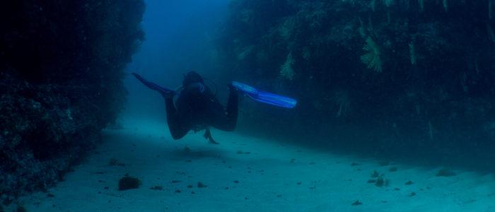 plongeur dans les jardins de Sausset